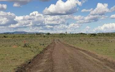 Home Afrika- Joska Plains Launch